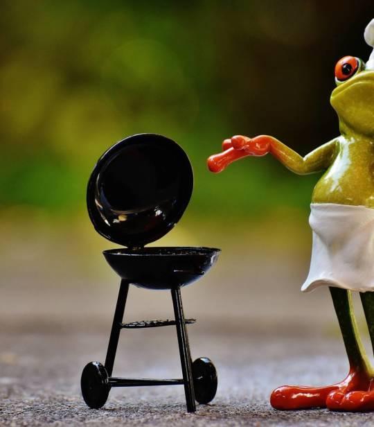 frog-1708728_1920-e1579698138511.jpg
